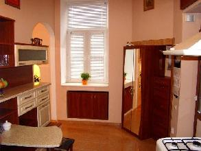 Apartments in Lviv - One room - Teodora Square, 3