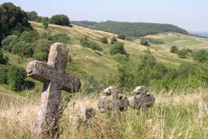 Genealogical Tour, Lviv